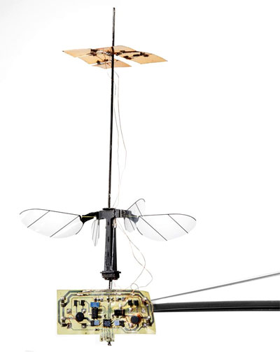 Миниатюрный летательный аппарат Robobee