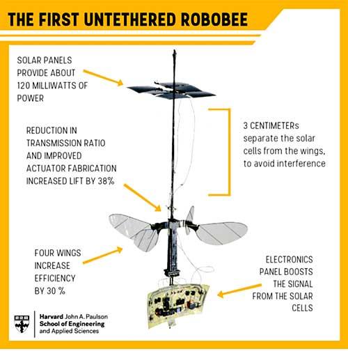 На схеме Robobee показано расположение его основных функциональных блоков и отмечены ключевые изменения