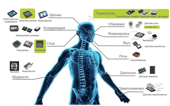 Использование МЭМС-датчиков для моделирования функций человеческого организма