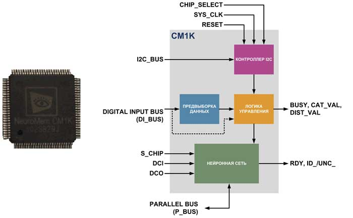 Внешний вид и структура нейропроцессора CM1K от NeuroMem