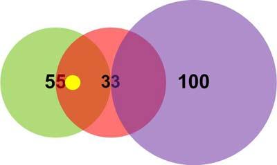 Пример 1. Положение вектора (12,12)