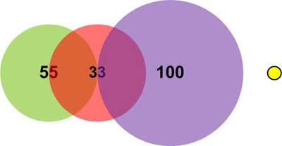 Пример 1. Положение вектора (200,200)