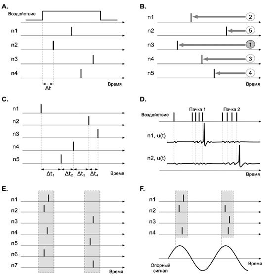 Способы кодирования данных в импульсных нейронных сетях (SNN) [3]