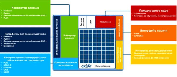 Структура нейронного процессора Akida NSOC